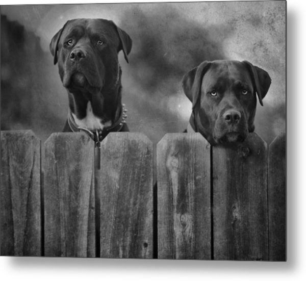 Mutt And Jeff 2 Metal Print