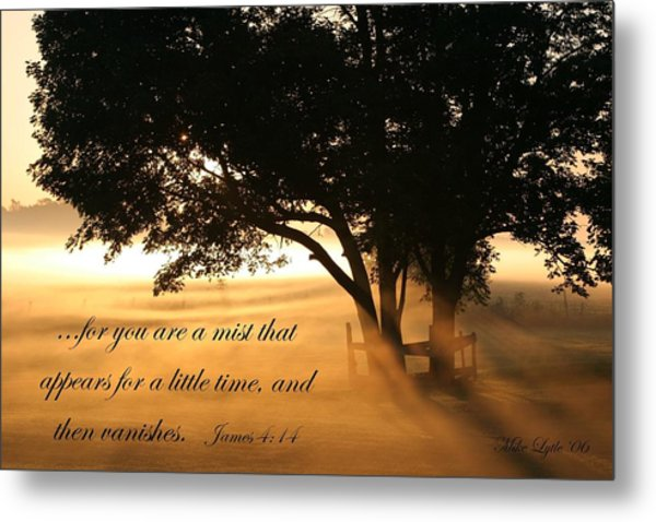 My Morning View Metal Print by Mike Lytle