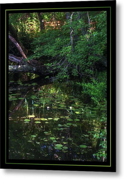 My Peace I Give You Metal Print by Matthew Green