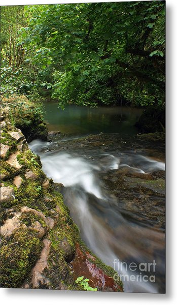 Mystic Creek Metal Print by Tyra  OBryant