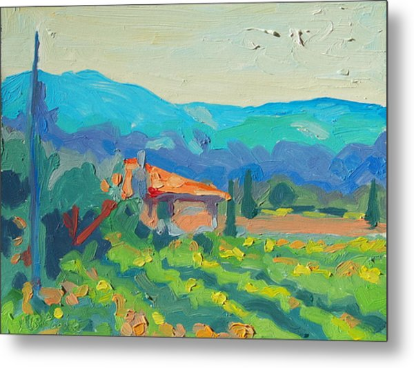 Napa Valley Vineyards With House And Hills Metal Print