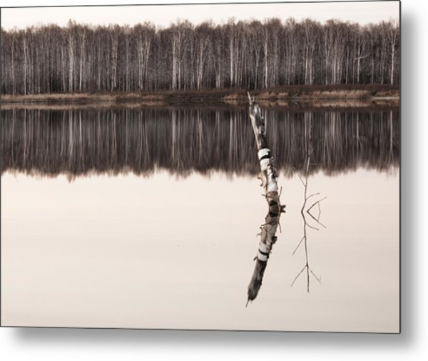 Nature Reflection Metal Print by Gouzel -