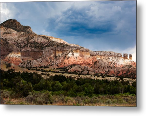 Nature's Paintbrush Metal Print