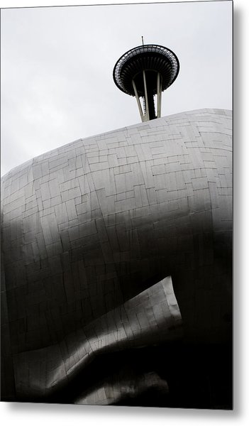 Needle In The Whale Metal Print