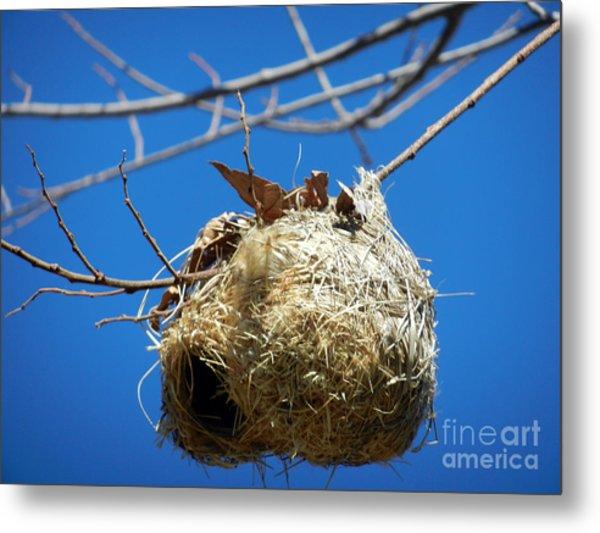 Nest For Rent Metal Print by Alexandra Jordankova