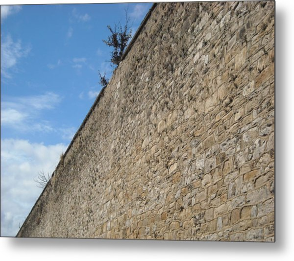 Never-ending Wall Of Dreams Metal Print