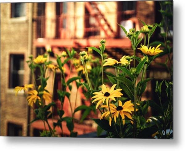 New York City Flowers Along The High Line Park Metal Print