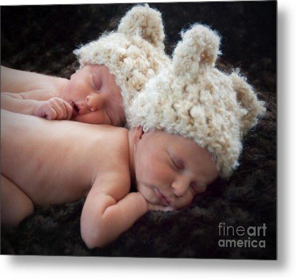 Newborn Twins Metal Print