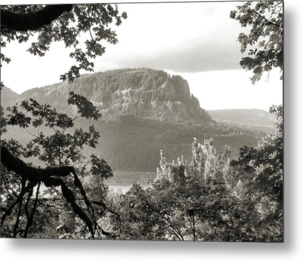 North To Dog Mountain Metal Print