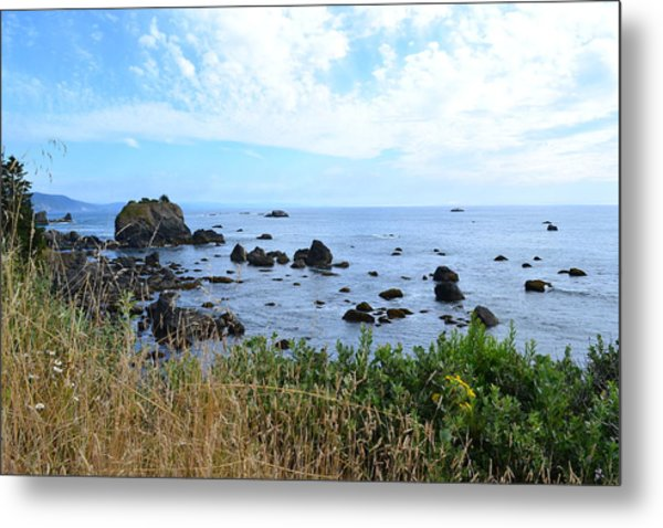 Northern California Coast2 Metal Print