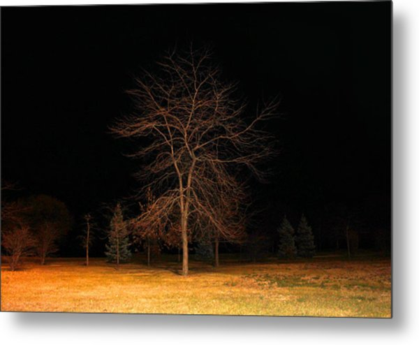 November Night Metal Print