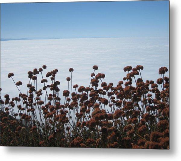 Ocean Of Clouds Metal Print by Diana Poe