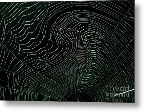 Oh What A Twisted Web..... Metal Print by Monica Poole