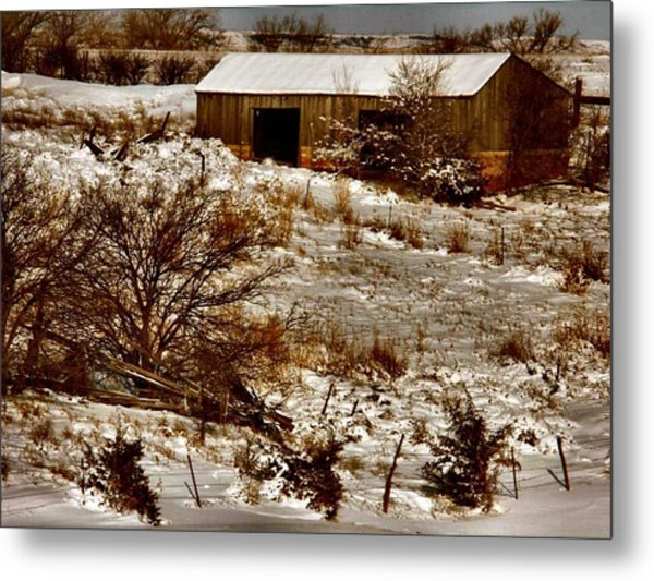 Ohhhh Its Cold Metal Print by Lynne and Don Wright