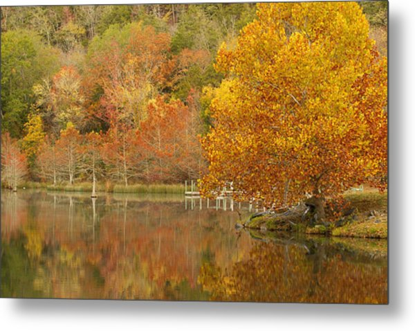 Oklahoma Autumn Metal Print
