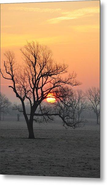Foggy Sunrise Metal Print