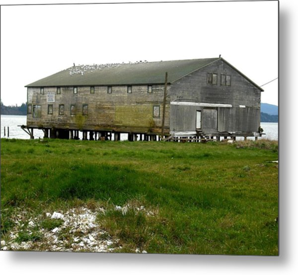 Old Cannery Oysterville Metal Print