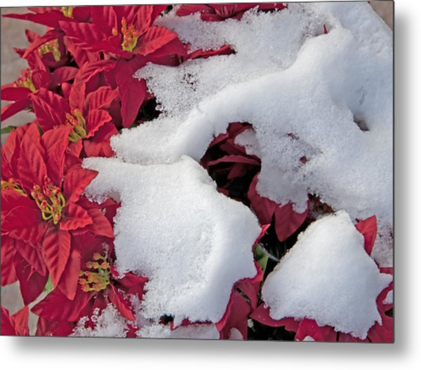 Old-fashioned Christmas 7 - Gardener Village Metal Print by Steve Ohlsen