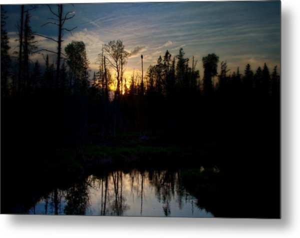 On A Summers Night Metal Print by Gary Smith