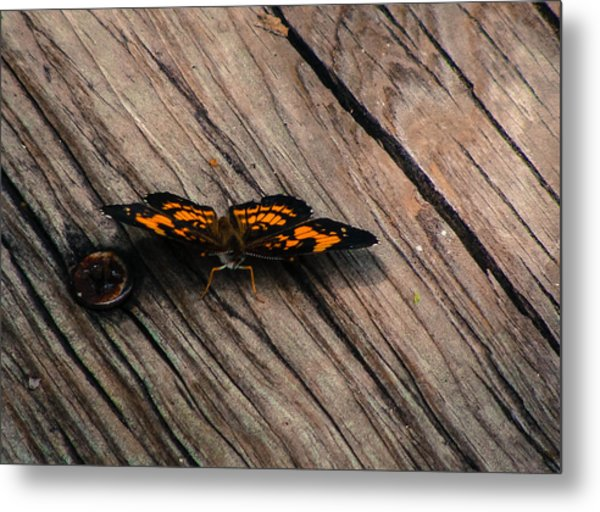 On The Boardwalk I Metal Print by Stacy Michelle Smith