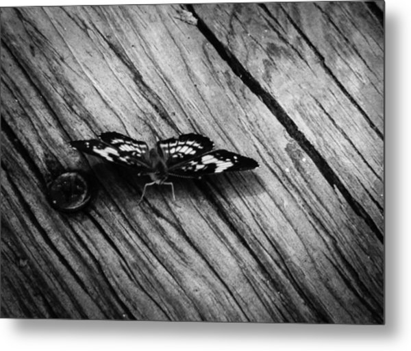 On The Boardwalk II Metal Print by Stacy Michelle Smith