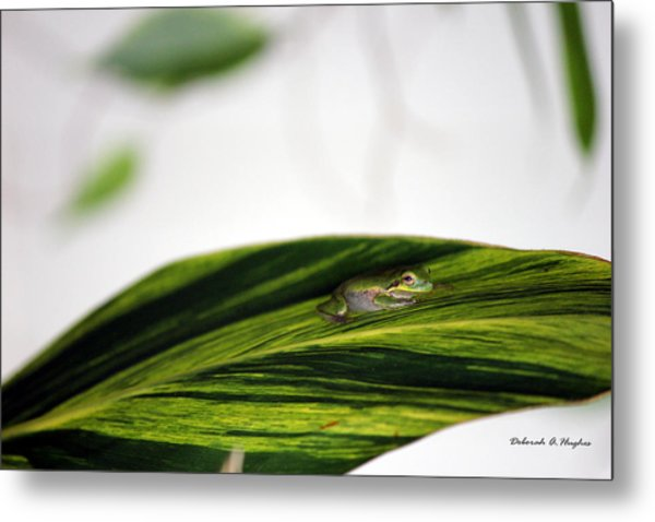 On The Outside Metal Print