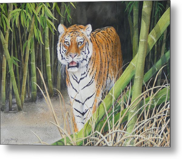 On The Prowl  Sold Prints Available Metal Print