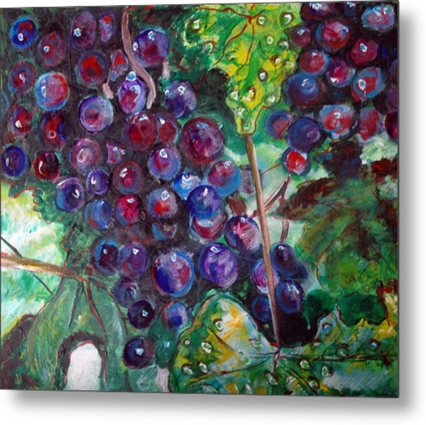 On The Vine Metal Print by Kat Richey