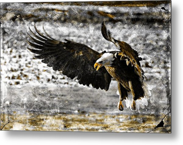 On The Wings Of Love Metal Print by Carrie OBrien Sibley