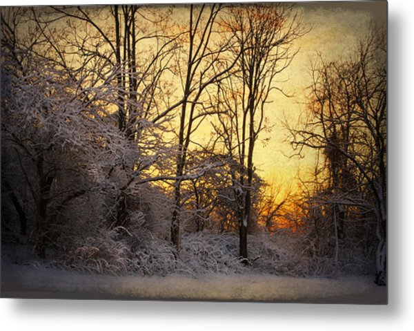 Once Upon A Winter Morning.. Metal Print