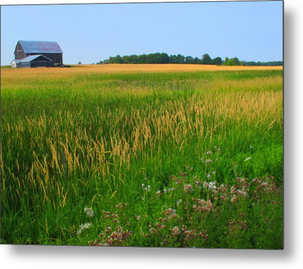 Ontario Farm  Metal Print by Lyle Crump