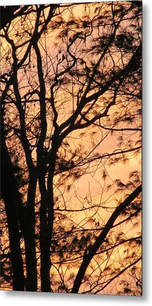 Orange Silhouette Metal Print