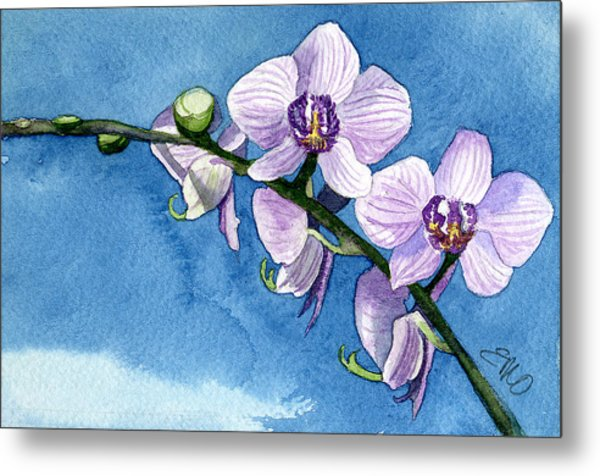 Orchid Metal Print by Eunice Olson
