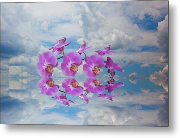 Orchid Sky Metal Print