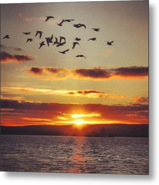 Orkkney's Sunset Metal Print