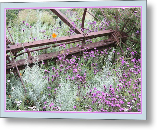 Out Of Danger Metal Print