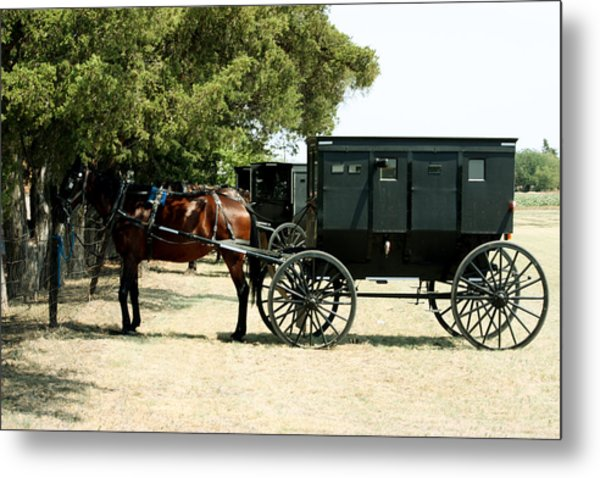 Out Of The Past Metal Print by Carolyn Ardolino
