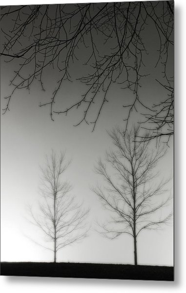 Outstretched Limbs Metal Print