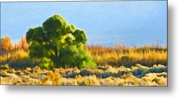Owens Valley Tree And Brush Metal Print
