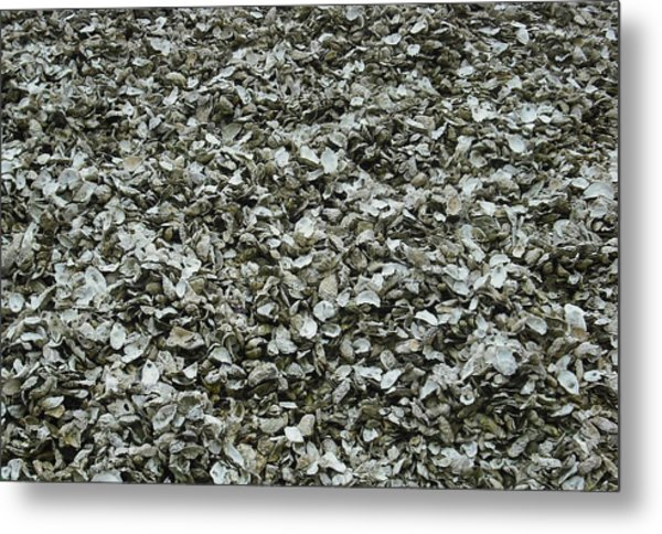 Oyster Piles In Oysterville Metal Print