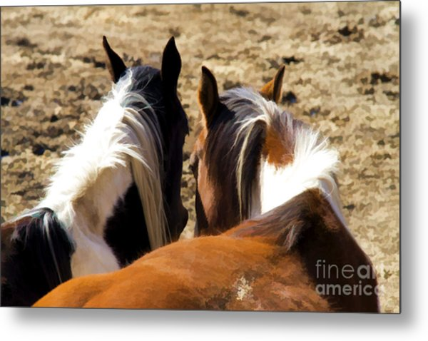 Painted Horses IIi Metal Print