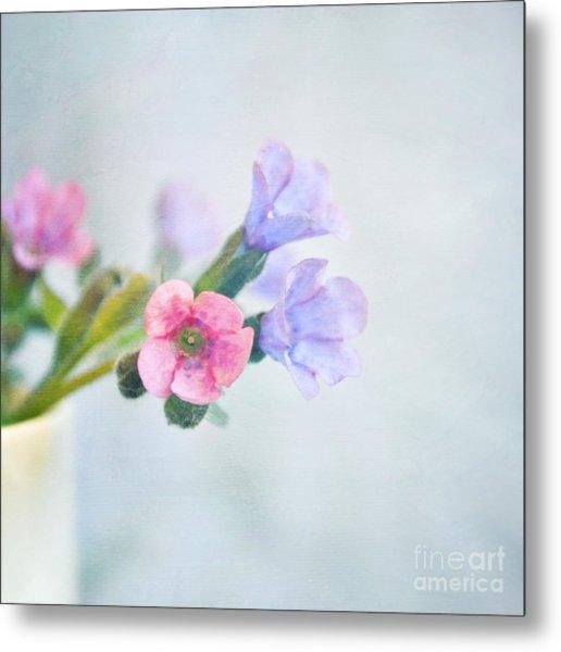 Pale Pink And Purple Pulmonaria Flowers Metal Print