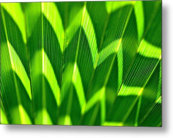 Palm Abstract Metal Print