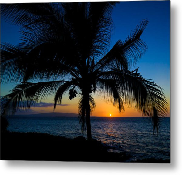 Metal Print featuring the photograph Palm Sunset by David Buhler