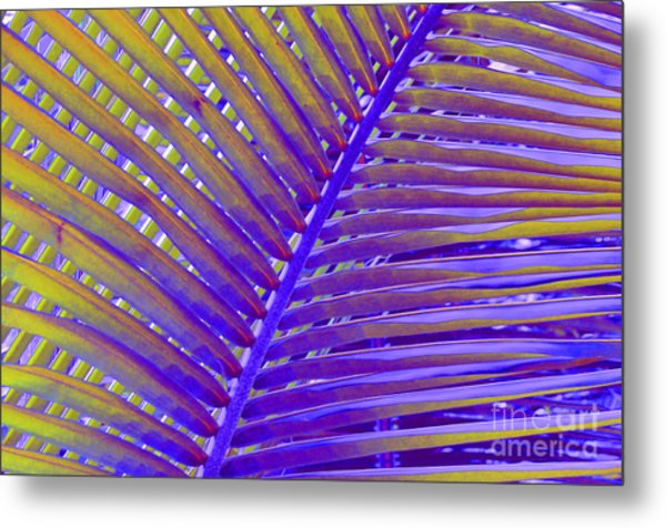 Palm Tree Abstract Metal Print