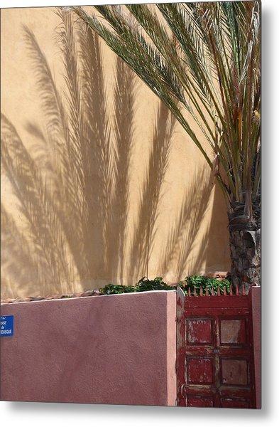 Palm Tree Shadow Metal Print by Christopher Mullard