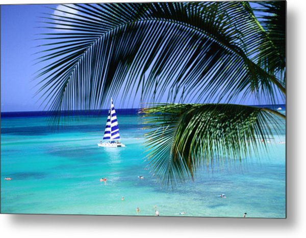 Palm Tree, Swimmers And A Boat At The Beach, Waikiki, United States Of America Metal Print by Ann Cecil