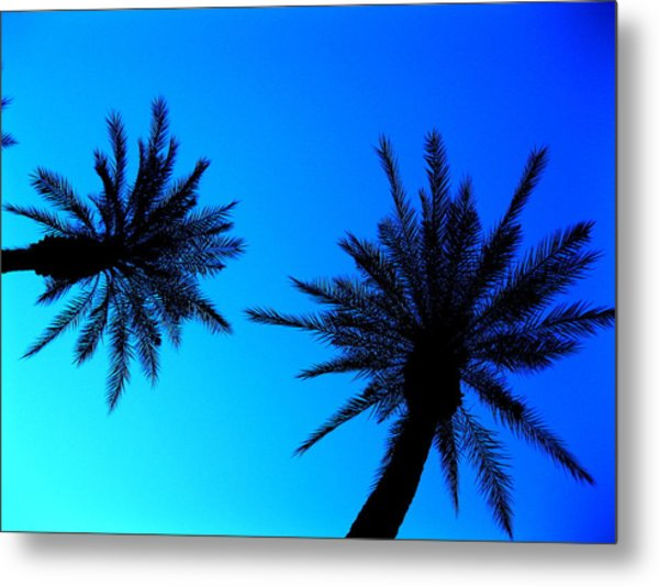 Palm Trees At Dusk Metal Print