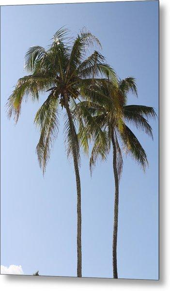 Palm Trees In Love Metal Print by Natalija Wortman