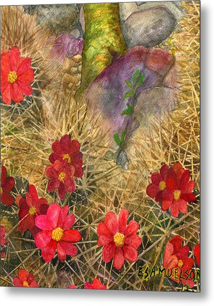Palo Verde 'mong The Hedgehogs Metal Print